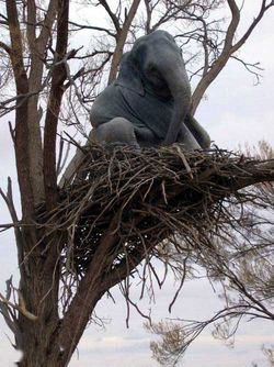 Elephant_in_tree